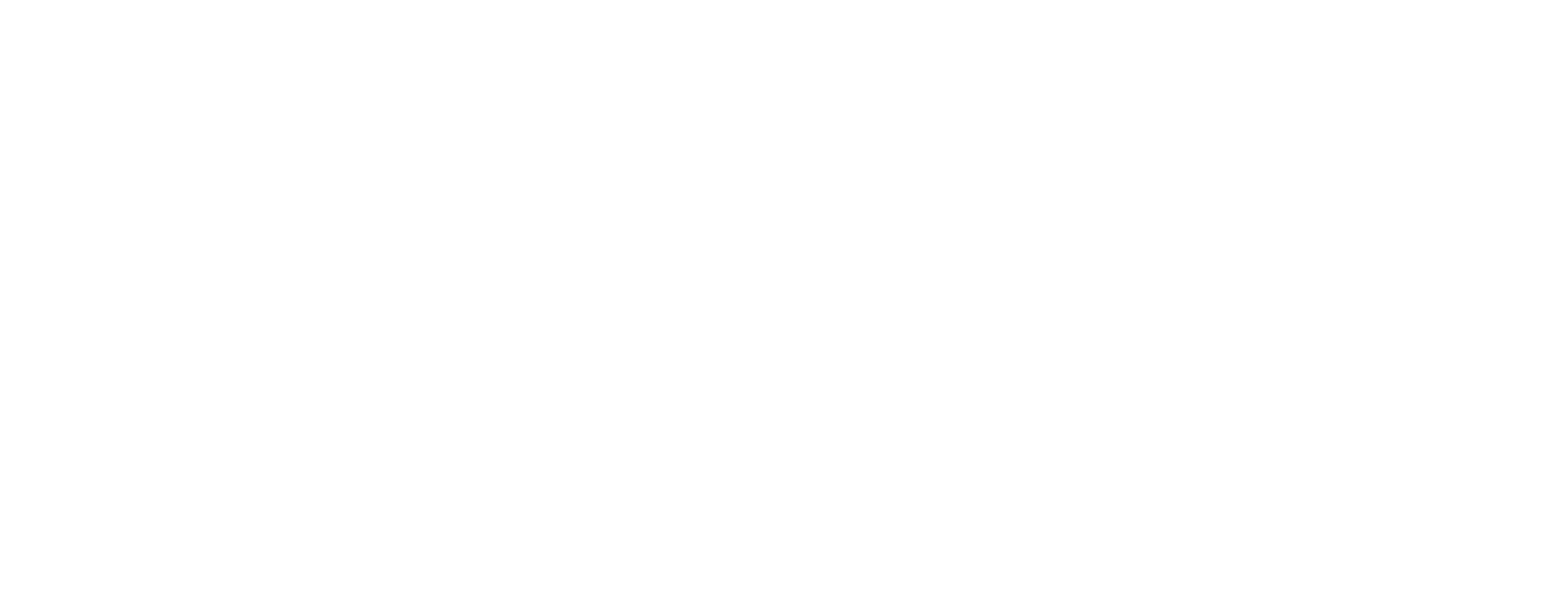 Firmdecisions Logo Website